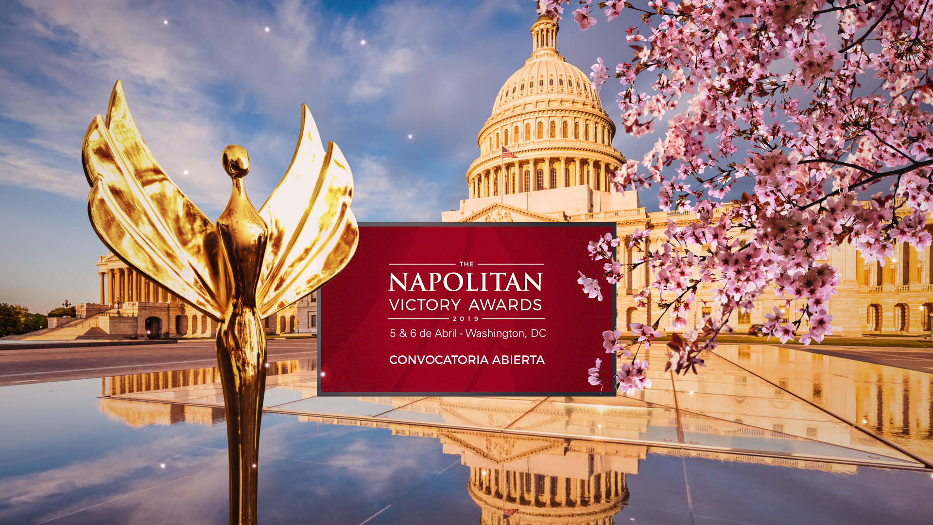 The Washington Academy of Political Arts and Sciences - Napolitan Victory Awards